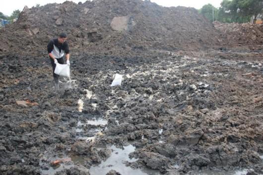 有机物污染土修复